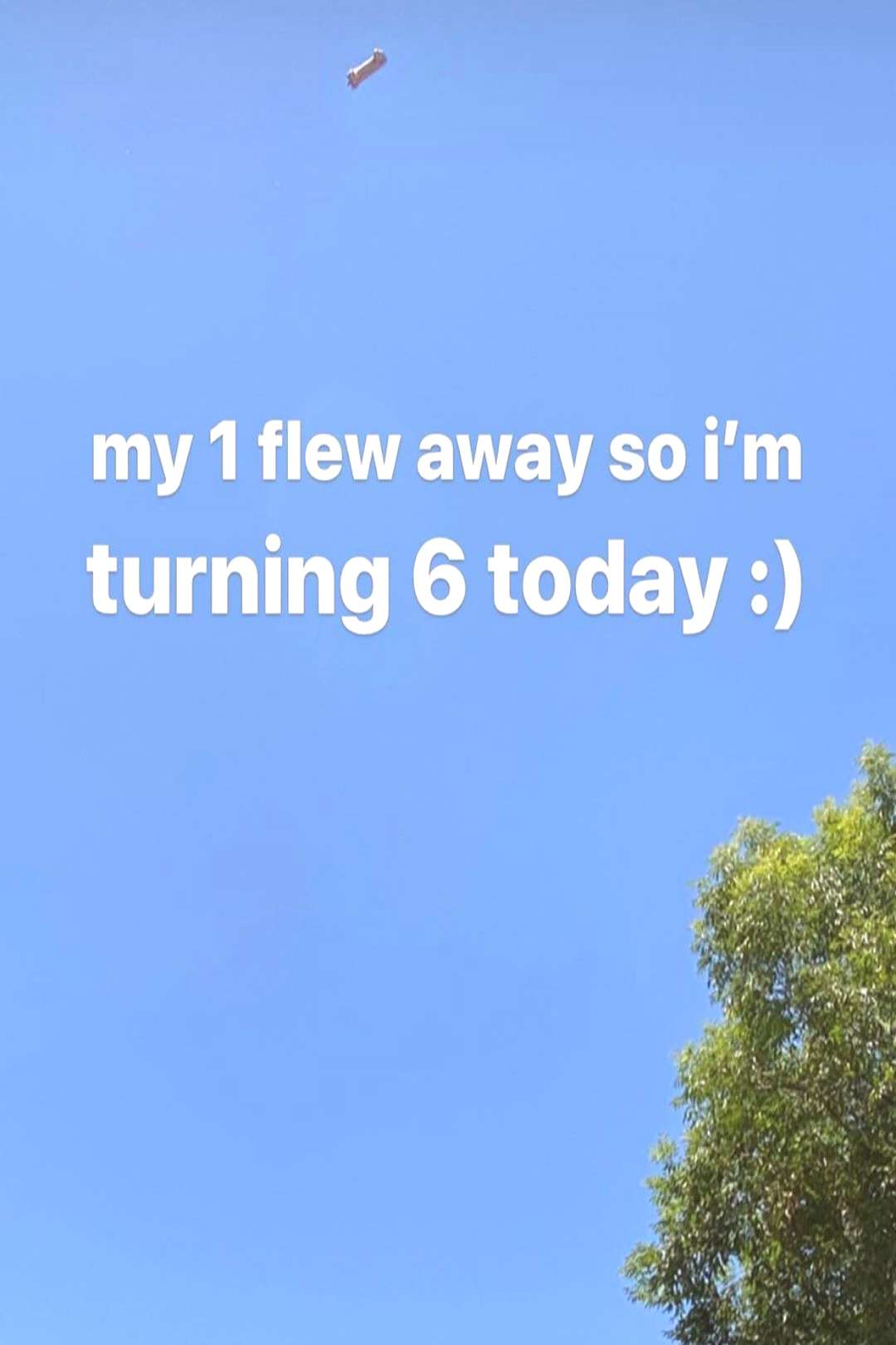 on June 04 2020 sky text that says my 1 flew away so im turning 6